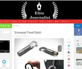 travel-stash-elite-journalist